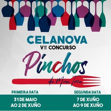 VIII PINCHOS DA MIÑA TERRA Celanova